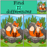 Children games: Find differences. Little cute baby fox looks at the fly. Children games: Find differences. Little cute baby fox looks at the fly on his nose and Stock Photos
