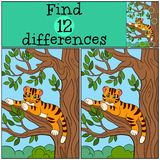 Children games: Find differences. Little cute baby tiger lays in the tree branch. Children games: Find differences. Little cute baby tiger lays in the tree Stock Photos