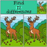 Children games: Find differences. Little cute deer. Children games: Find differences. Little cute deer stands on the clearing in the forest Royalty Free Stock Photography