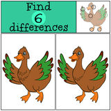 Children games: Find differences. Little cute duck. Children games: Find differences. Little cute duck runs and waves her wings Royalty Free Stock Photo