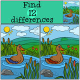 Children games: Find differences. Little cute duck. Stock Image