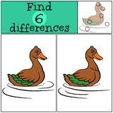 Children games: Find differences. Little cute duck. Children games: Find differences. Little cute duck swims and smiles Royalty Free Stock Photography