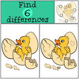 Children games: Find differences. Little cute duckling. Children games: Find differences. Little cute duckling in the egg Royalty Free Stock Image