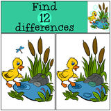 Children games: Find differences. Little cute duckling. Royalty Free Stock Photo