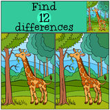 Children games: Find differences. Little cute giraffe. Children games: Find differences. Little cute giraffe eats leaves in the forest Royalty Free Stock Photography