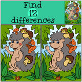 Children games: Find differences. Little cute hedgehog. Children games: Find differences. Little cute hedgehog has a lot of mushrooms in his needles Stock Photo