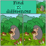 Children games: Find differences. Little cute hedgehog. Children games: Find differences. Little cute hedgehog holds the mushroom in the hands Stock Photo