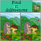 Children games: Find differences. Little cute hedgehog. Children games: Find differences. Little cute hedgehog looks at the mushrooms Royalty Free Stock Image