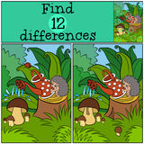 Children games: Find differences. Little cute hedgehog . Children games: Find differences. Little cute hedgehog stands on the stump and waters the mushrooms Royalty Free Stock Image