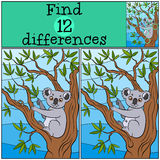 Children games: Find differences. Little cute koala. Children games: Find differences. Little cute koala sits on the tree branch and eat leaves Royalty Free Stock Images