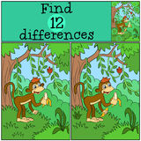Children games: Find differences. Little cute monkey. Children games: Find differences. Little cute monkey holds banana in the hands Stock Photography