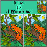 Children games: Find differences.. Little cute orange chameleon sits on the tree branch and smiles Royalty Free Stock Images