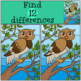 Children games: Find differences. Little cute owl. Children games: Find differences. Little cute owl sits on the tree branch vector illustration