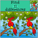 Children games: Find differences. Little cute parrot. Children games: Find differences. Little cute parrot sits on the tree branch Stock Photography