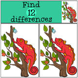 Children games: Find differences. Little cute red chameleon. Sits on the tree branch and looks at the fly Stock Photos