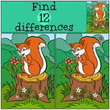 Children games: Find differences. Little cute squirre. Stock Images