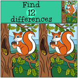 Children games: Find differences. Little cute squirrel. Royalty Free Stock Photography