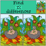 Children games: Find differences. Mother hedgehog holds the little cute baby hedgehog. Royalty Free Stock Photo