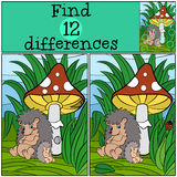 Children games: Find differences. Mother hedgehog seets and her cute baby hedgehog. Stock Photos