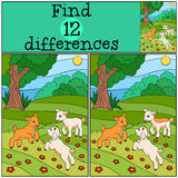 Children games: Find differences. Three little cute baby goats. Stock Photo