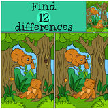 Children games: Find differences. Two little cute baby bears. Royalty Free Stock Photos