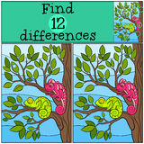 Children games: Find differences.. Two little cute chameleons sits on the tree branch and smiles Royalty Free Stock Image