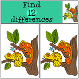 Children games: Find differences. Two little cute chameleons sits on the tree branch and smiles Stock Images