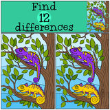 Children games: Find differences. Two little cute chameleons. Sits on the tree branch and smiles Royalty Free Stock Photography
