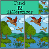 Children games: Find differences. Two little cute duck. Children games: Find differences. Two little cute duck fly under the pond. They are happy Stock Images