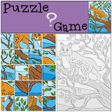 Children games: Puzzle. Cute beautiful lynx. Royalty Free Stock Photography