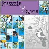 Children games: Puzzle. Little cute toucan. Stock Image