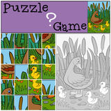 Children games: Puzzle. Mother duck with her ducklings. Stock Image