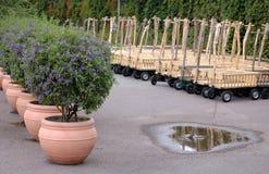 Children garden cart Royalty Free Stock Photo
