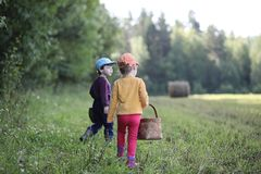 Children go to the forest for mushrooms royalty free stock photo
