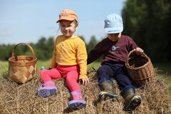 Children go to the forest for mushrooms royalty free stock image