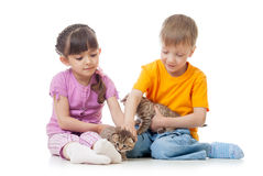 Children girl and boy stroking kittens Royalty Free Stock Images