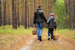 Children go looking for mushrooms on a footpath. A boy and a girl are on a forest path for mushrooms. children hold baskets in their hands. shot from behind Royalty Free Stock Photography