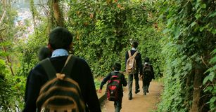 Children go to school, Little boys and girls with a backpack go to school. Back view stock images