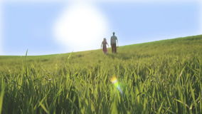 Children are going by the green meadow towards the bright sun. Green spring field under a blue sky. stock video