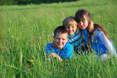 Children in the grass stock images