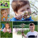 Children on the green grass Stock Images
