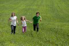 Children  on green meadow field Stock Photos