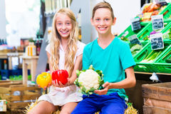 Children grocery shopping in corner shop Royalty Free Stock Photography