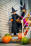 Children on halloween. Happy children in a costumes of witches and wizards celebrating halloween. Trick or treat. Halloween party Stock Photos