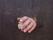 Children hand with small fingers through hole in wooden climbing wall ladder on kids playground Stock Photography