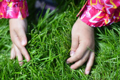 Children hand on young grass. Royalty Free Stock Photography