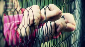 Children hands holding metal fence stock footage