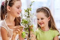 Children hang easter egg on cherry branch Royalty Free Stock Photography