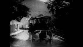 Children hanging on to back of horse carriage, 1920s stock video