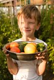 Children gather vegetables harvest. The boy works in a greenhouse with vegetables.. Children harvest vegetables in a family garden. A boy in a greenhouse royalty free stock image